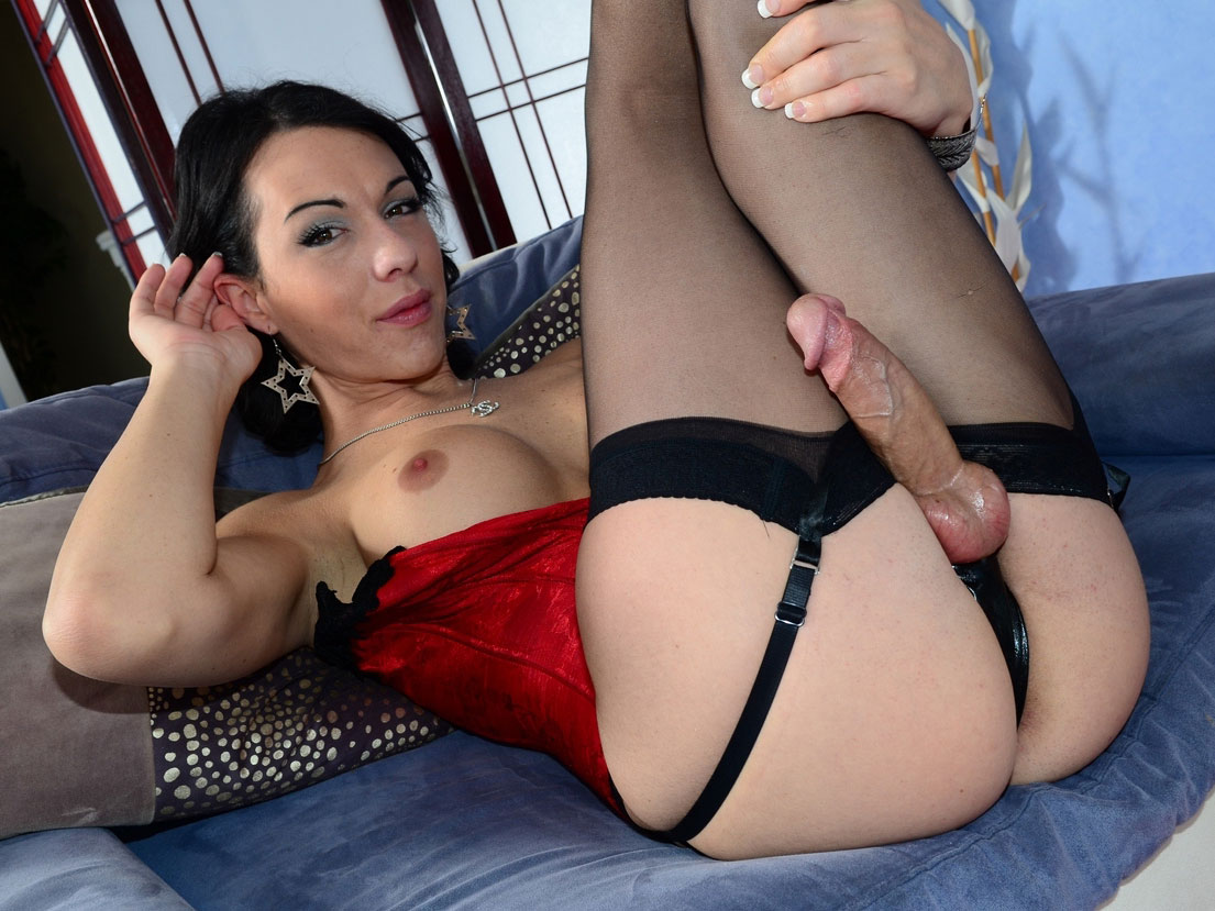 Gorgeous shemale ts nelly in stockings asshole pounded