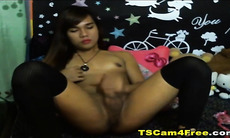 Cute Asian Tranny Jerking Off